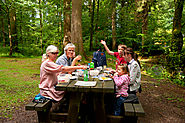 10 perfect woodland picnic spots in Scotland