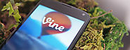 Vine's Explore Tab Now Display Recent and Popular Videos