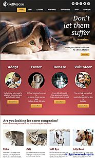 Pet Rescue Theme for website