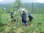 Summertime Gear for your Alaska Horseback Adventure - Pioneer Outfitters Alaska