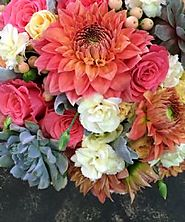 Thank you - Special Occasions - - Funky Bunches
