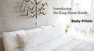 body pillow expert a listly list