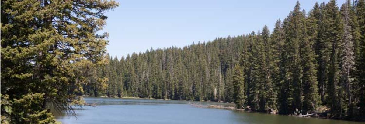 Headline for Lakes to Visit on Western Colorado's Grand Mesa