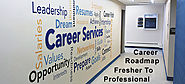 Career Road-Map: Fresher to Successful Business Professional