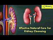 Effective Natural Cure For Kidney Cleansing