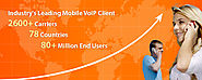 How to Start a Business VoIP?
