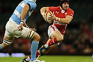 Rugby 2015 World Cup Live Streaming To Watch Here