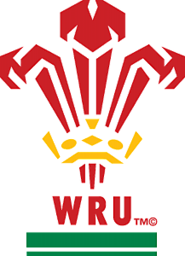 Wales Rugby World Cup Schedule Match Timings | Dragons RWC Fixtures 2015