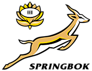 South Africa Rugby World Cup Schedule Matches Timings 2015 : Springboks Schedule for RWC 2015
