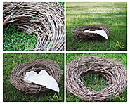 Renae Alane Photo: Do It Yourself: Photography Prop Nest