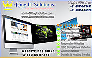 top website company in ludhiana punjab india