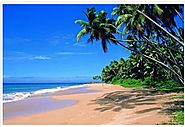 Serviced Apartments in Goa