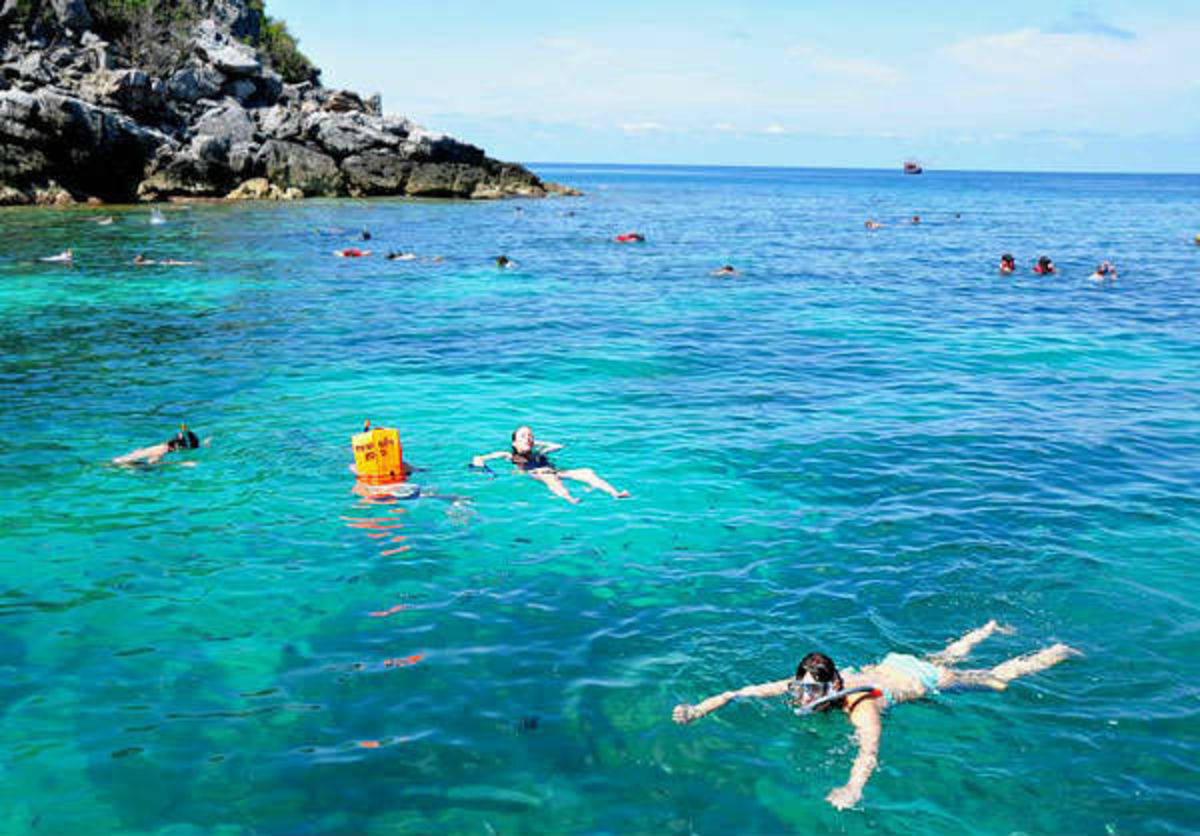 Headline for Best Snorkelling spots in Koh Phangan - Top Snorkelling Hubs in Captivating Koh Phangan