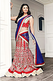 Red heavy embroidery lehenga choli -