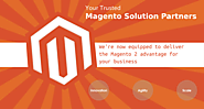 Solution partners give highest degree of perfomance in Magento website