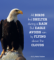 """All Birds find shelter during a rain. But Eagle avoids rain by flying above the Clouds."""