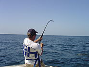 Fishing Rods Make Great Gifts (with image) · emailcash