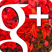Google+ Helper Community