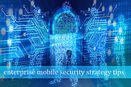 Security strategy for protecting enterprise application data