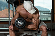 Anabolic Steroids and Weight Gain - Diet, Mechanism, Use - Steroidly