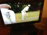 Ducking Beamers: A Cricket Blog