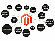 How Magento Adds Cheers To Enterprise's Ecommerce Software?