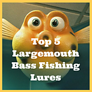 Top 5 Largemouth Bass Fishing Lures * Fins Catcher