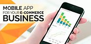 How A Mobile App Can Elevate Your E-commerce Website