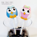 Raleigh Cake Pops Blog
