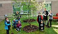 Langara College Continuing Studies launches an Organic Landscape Management Certificate.