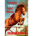 Trouble Rides a Fast Horse (Paperback)
