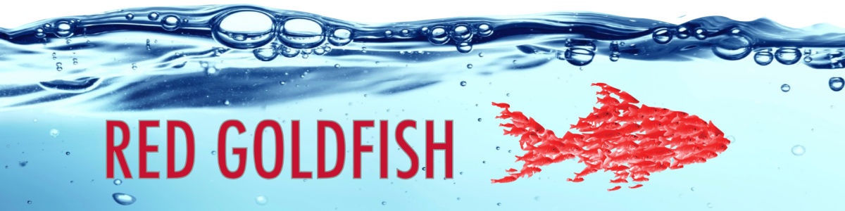 Headline for Red Goldfish Project