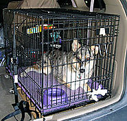 Dog crate - Wikipedia, the free encyclopedia