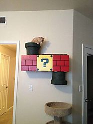 How to Build an Awesome Nintendo Inspired Cat Climber