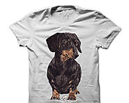 I Love Dachshunds T-Shirts and Hoodies - Tackk