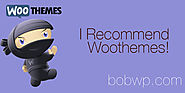 All That's WOO! A List of WooThemes