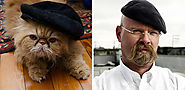 Cats and their Doppelgangers - Pet Reporters