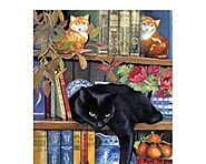 1000 Piece Cat Jigsaw Puzzles - Tackk