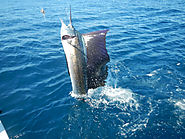 Fishing in Quepos at Queposfishingpackages.com