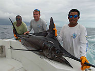 Marlin Fishing Quepos at Queposfishingpackages.com