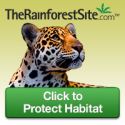 Protect -Endangered Animals- with a free click!