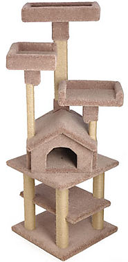 High quality wooden kitty gym