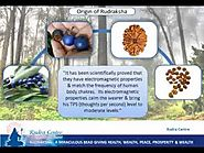 "Known Everything About ""Rudraksha Beads"" From Origin to it's Benefits"
