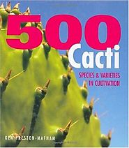 500 Cacti: Species and Varieties in Cultivation