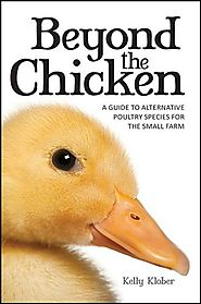 Beyond the Chicken: A Guide to Alternative Poultry Species for the Small Farm
