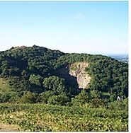 Take a refreshing stroll along the Malvern Hills