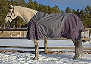 Top Medium Weight Horse Blankets
