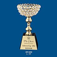 Promotional Wooden & Metal Trophies Manufacturers India