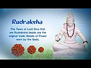 Impotance of Rudraksha Beads