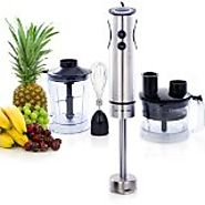 Top Rated 4 in 1 Heavy Duty Hand Blenders